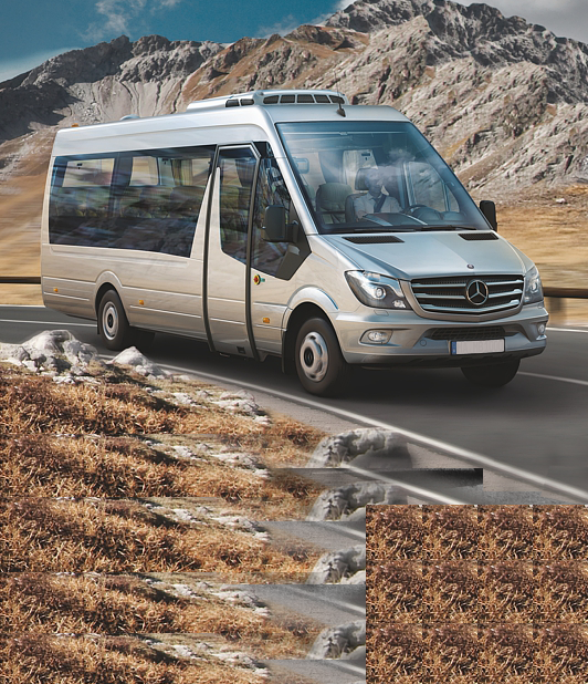 Chauffeur-driven minibuses and minivans